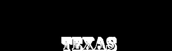 Texas Fajitas 3